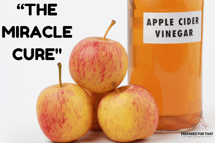 Apple Cider Vinegar A Must-Have for Your Pantry
