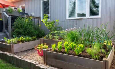 7 keys to finding great food right in your backyard